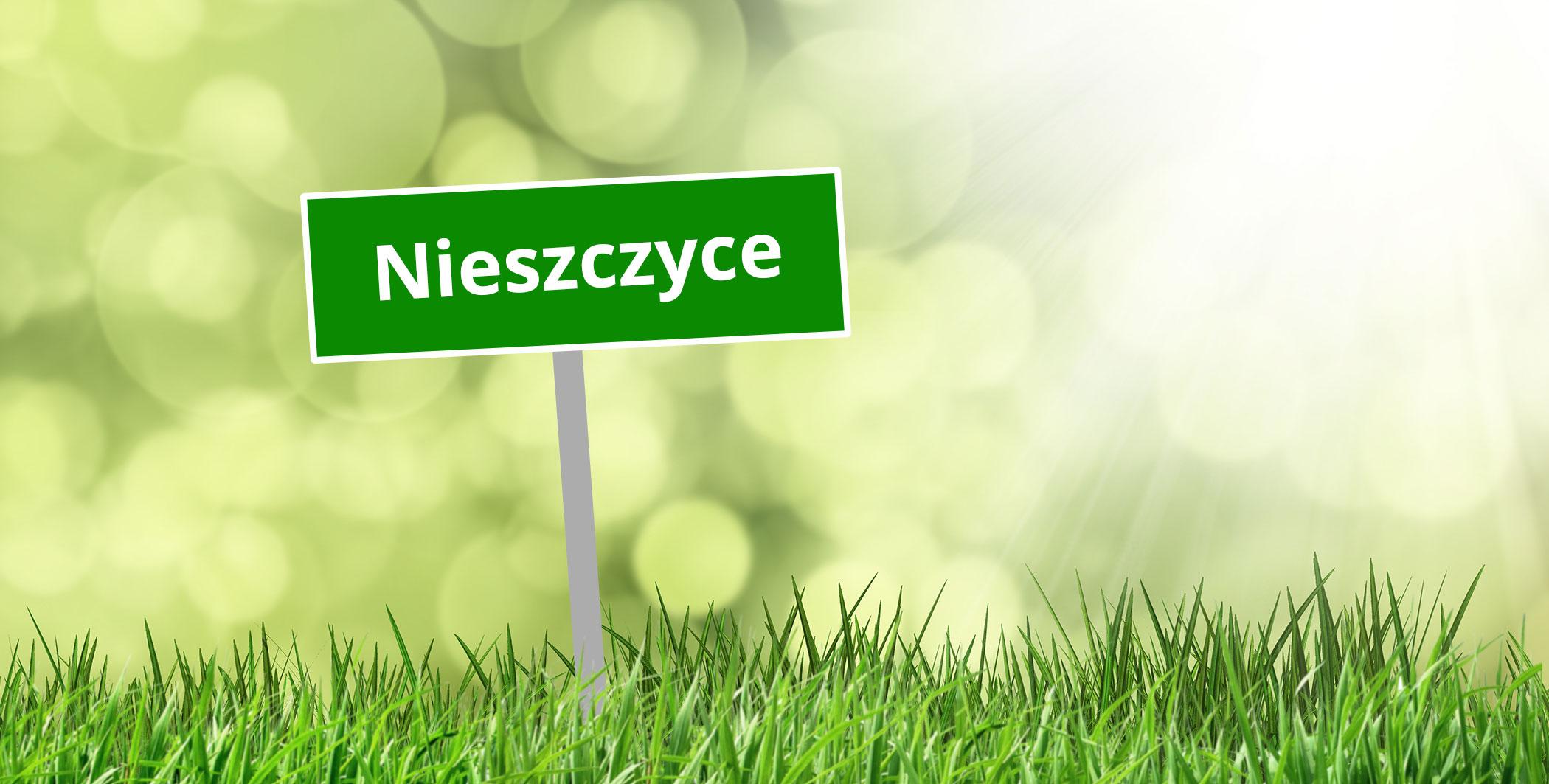 Sołectwo Nieszczyce