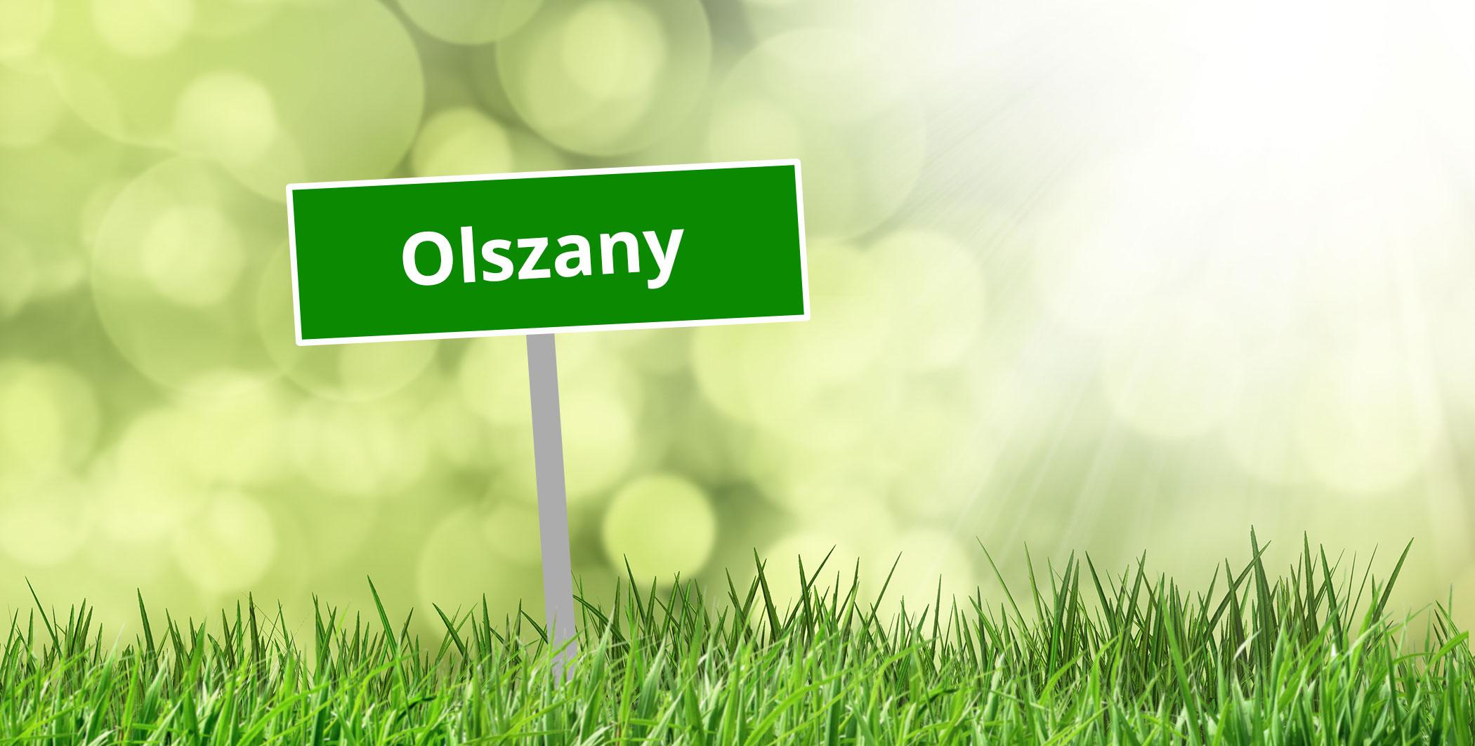 Sołectwo Olszany