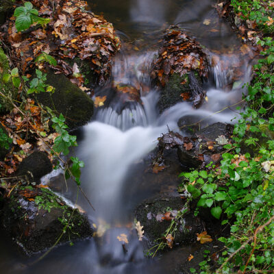 Kaskady w strumieniu leśnym