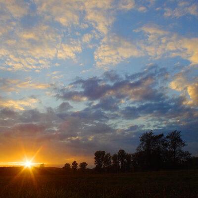 Widok na pole z zachodzącym słońcem
