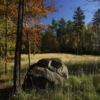 Skraj lasu jesienią i skała