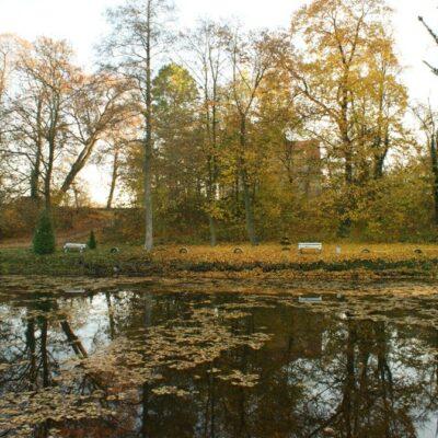 Widok na jezioro w Nieszczycach