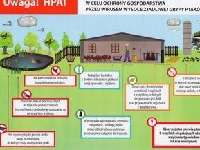 Infografika HPA