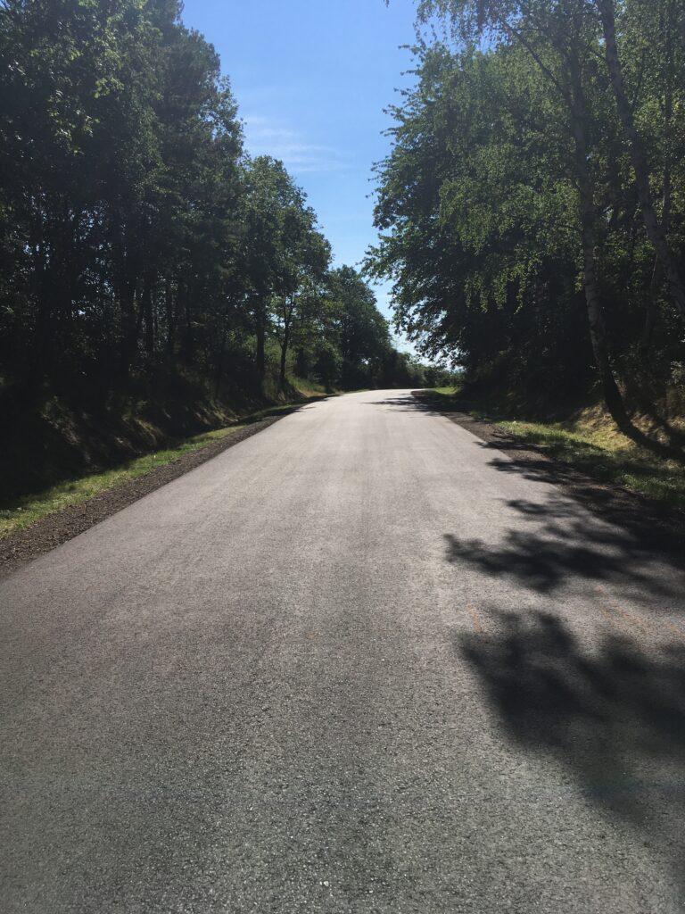 Droga gminna Radoszyce-Chobienia