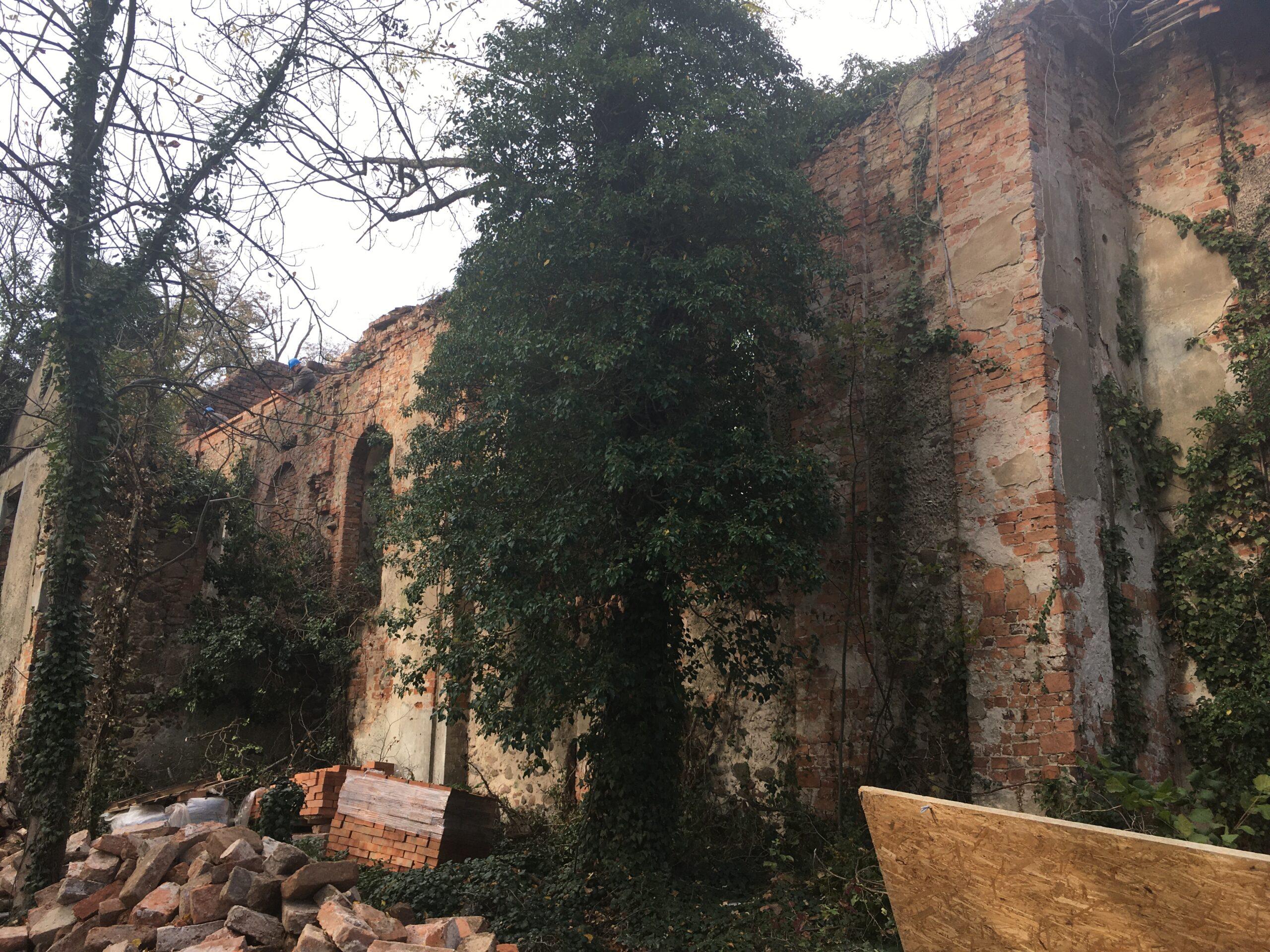 Trwają prace, które pozwolą ocalić ruiny tej średniowiecznej budowli od całkowitej degradacji.