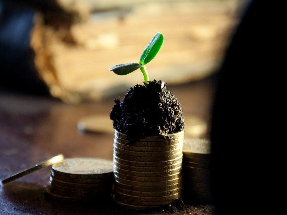 Roślinka z ziemią na monetach
